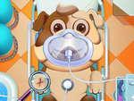 Animal Daycare game