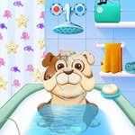 Игри за дневни игри с животни