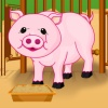 Baby Piggy Care game
