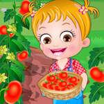 Baby Hazel TomatenZucht Spiel