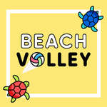 Beach Volley game