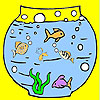 Big aquarium and fishes coloring game