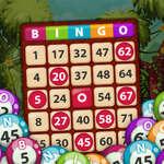 Regele Bingo joc