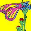 Butterfly on the toes coloring game