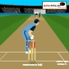 Cricket-Master Blaster game