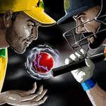 Световна купа по крикет игра