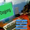 Dogjong gioco