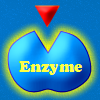 Enzymatic game