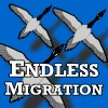 Endless Migration game