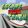 Escape From Train game