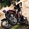 Extreme Motocross-Star Spiel