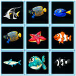 Fish Connections game