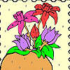 Flowers on the frame coloring game