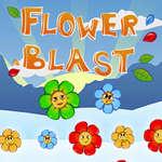 Kvetina Výbuch hra