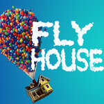 Fly House game