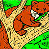 Fox on the tree coloring game