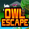 Forest Owl Escape game
