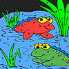 Frog friends in the lake coloring game