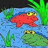 Жаба приятели в езерото оцветяване игра