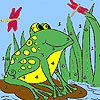 Frog and dragonflies coloring game