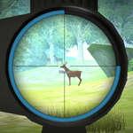Hunter Training Spiel