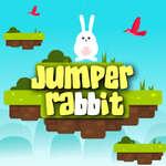 Jumper Rabbit game