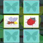 Kids Memory with Insects game