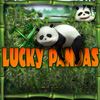 Pandas suerte juego