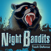 Night Bandits TD game
