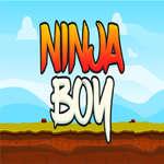 Нинджа момче игра