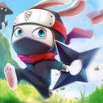 Ninja Rabbit Spiel