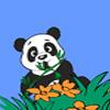 Panda aventure jeu
