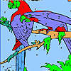Parrots on the woods tree coloring game