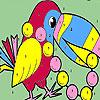игра Жемчужина попугай окраски