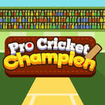 Pro Cricket Champion game