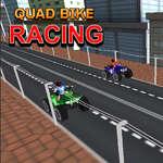 Quad Bike Racing game