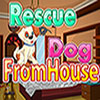 Rescue Dog from House game