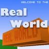Valós világ játék