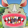 Rinocer dinte probleme joc