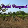 Geheime wijngaard spel