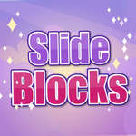 Slide blocks Puzzle game