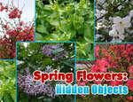 игра Весенние цветы скрытые объекты