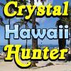 SSSG - Hawaii játék