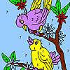 игра Сладкий соседних птицы раскраски