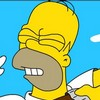 Il Simpsons Homer lotta gioco