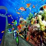 under water cycle impossible track game