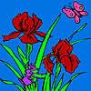 Coloriage jardin belette jeu