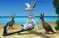 Yetisports Albatros juego
